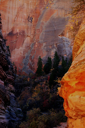 Hiking in Zion 2