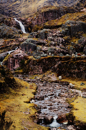 Peru  - Andes III