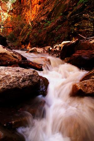 Spring Creek 1