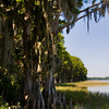 Little Lake Harris - Lake County Florida