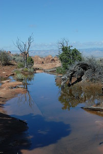 © Joseph Dougherty. All rights reserved.   An ephemeral desert pool reflects the sky after a desert rainstorm in Arches National Park.
