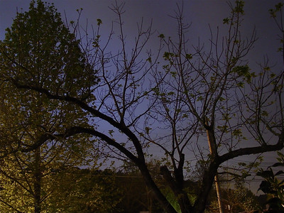 2005 04.19 Evening Sky Shots