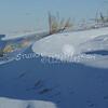 (202) Snow Scenes in Iowa