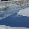(200) Snow Scenes in Iowa