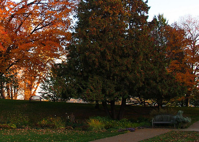 Last Saturday I was out with the camera just taking some random shots to trouble-shoot an issue with my Canon G5. The problem never showed itself, but the fall colors sure did! ---------- I worked this shot on my computer & LCD monitor with Photoshop Elements. This was before I made some adjustments of gamma to my LCD. When I initially uploaded it it looked fine - that was because my LCD was way too bright. In actuality the photograph was/is too dark. Now, view the next image which is a further re-working of this one.