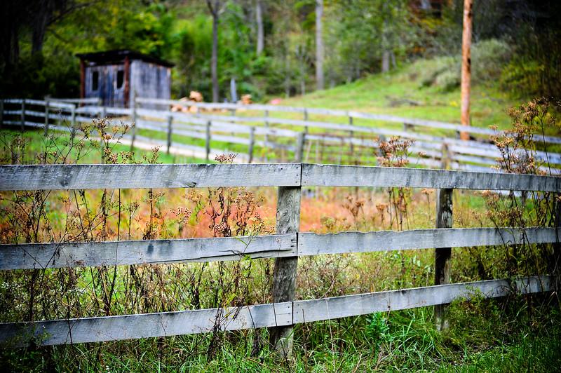 Wood fence, KY (USA)