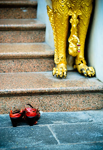 Shoes and paws, Thailand