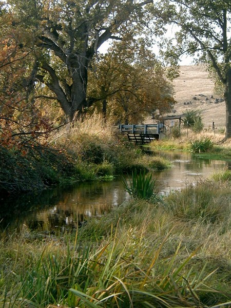 Country Creek<br /> Anderson, California