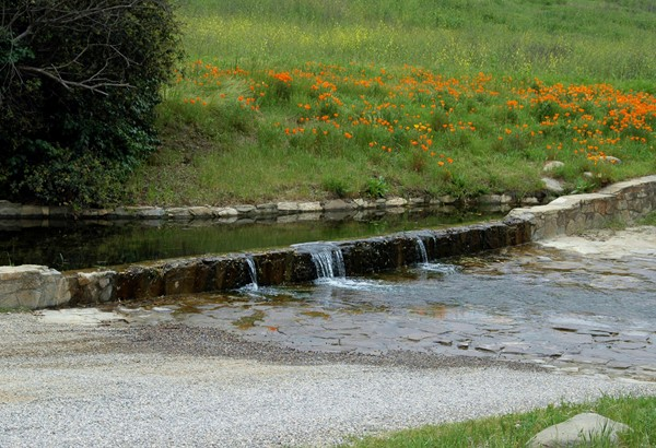 Water on the Road<br /> <br /> Santa Ynez, California