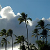 Hawaiian Clouds