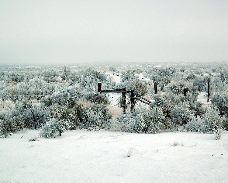 Winter In Nevada