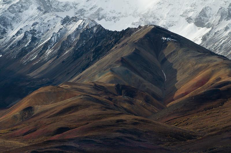 Denali NP - autumn scene