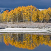 Autumn at the Oxbow bend (Snake River), Grand Teton National Park
