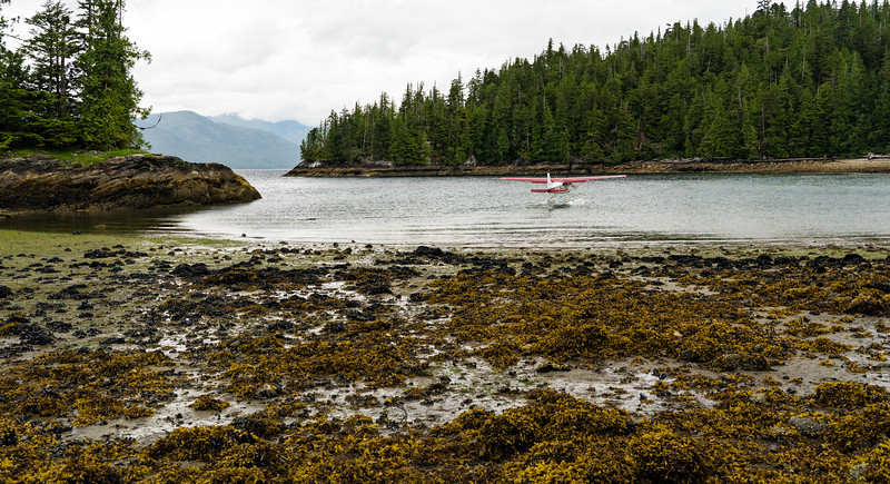 Low Tide At Hut Point