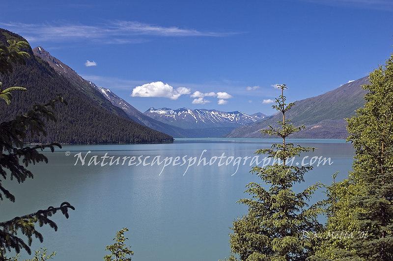 Back Bay, Katchemak Bay Alaska