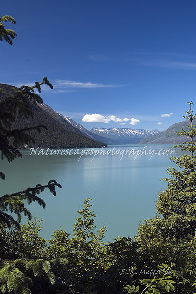 Back Bay, Katchmak Bay, Alaska