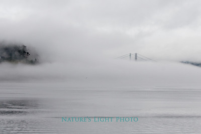Tacoma Narrows Bridge Fogged In