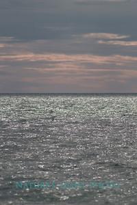 Bay, Honeymoon Island, FL-7436