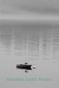 Heron's Rowboat