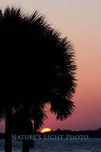 Sunset, Honeymoon Island Causeway, FL