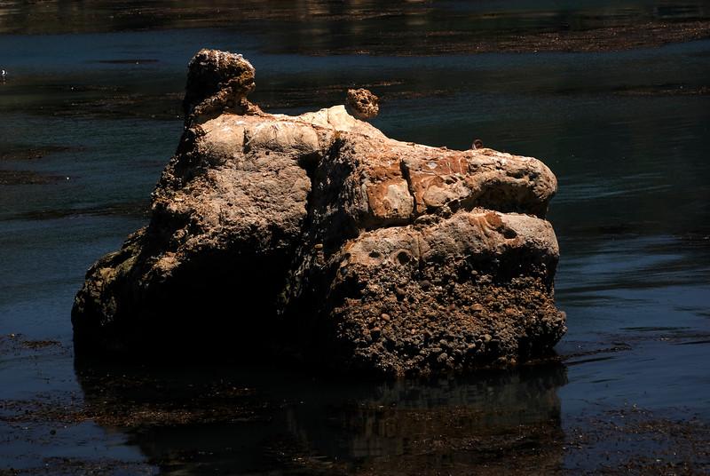 Cat Face in Rocks