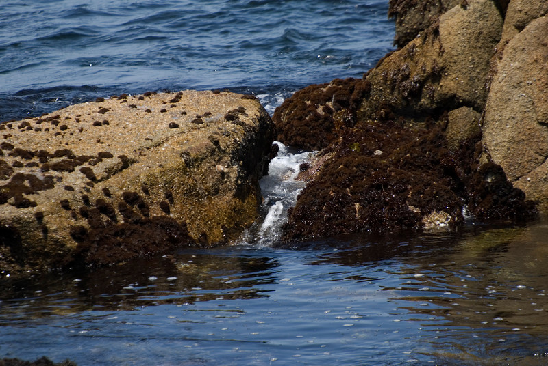 Wave Action & Rocks