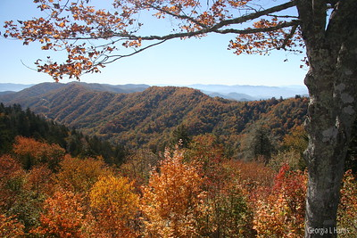 Great Smoky Mtn National Park (Newfound Gap)