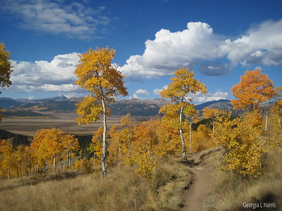 Colorado - Colorado Trail
