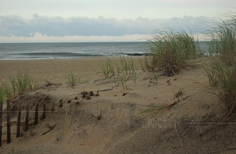 Dunes at Ocean Grove