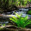 Kakabika Falls 2