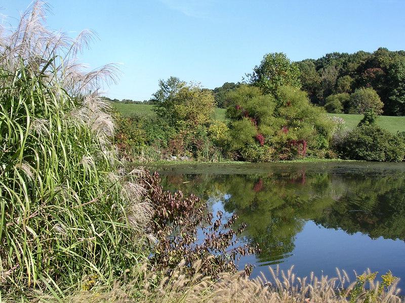Quiet lake.<br /> <br /> 10-8-06