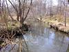A quiet stream meanders through a wetland.<br /> 4-2-06