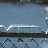 Icey fence