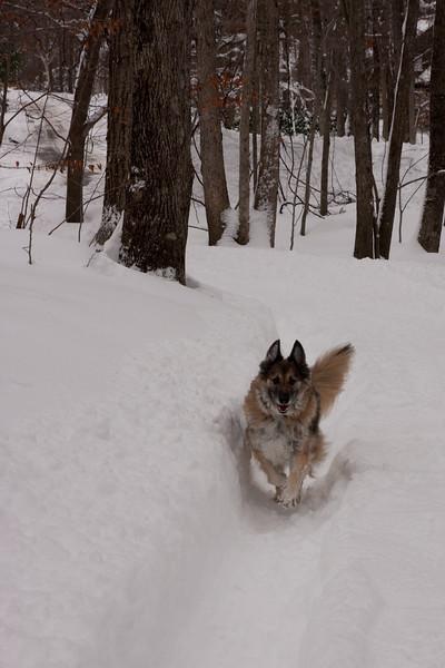 IMG_7603_snow