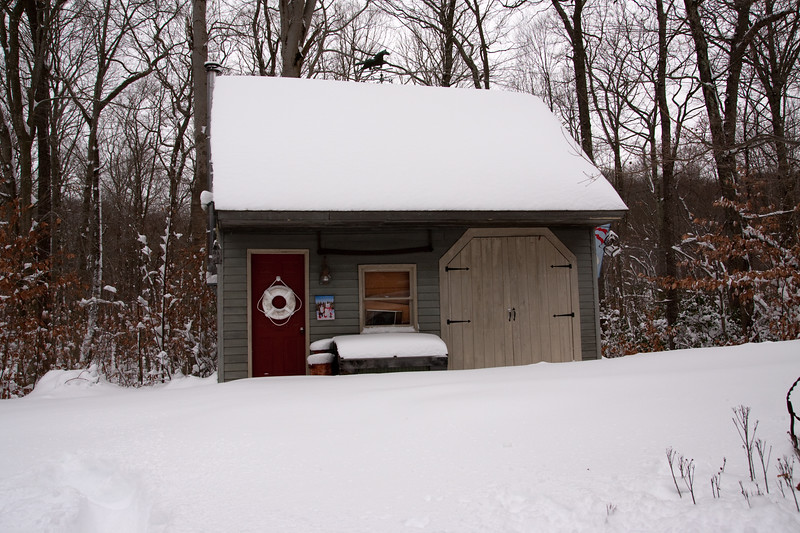 IMG_7606_snow
