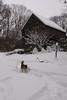 IMG_7594_snow