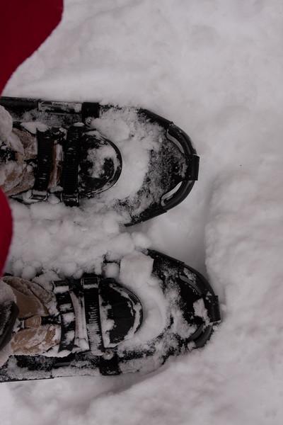 IMG_7608_snow
