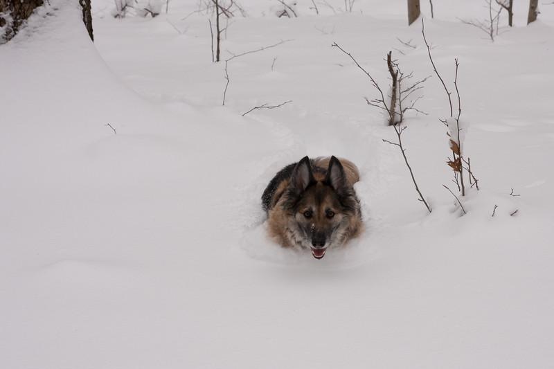 IMG_7587_snow