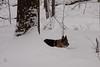 IMG_7583_snow