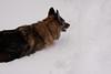IMG_7591_snow