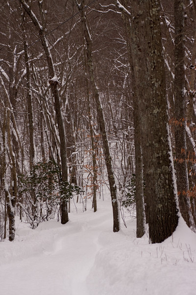 IMG_7570_snow