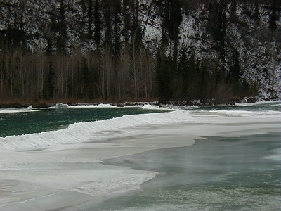 The Matanuska River flows year 'round, clearing up once freeze-up begins and the glacier's melting ceases.  This natural ice dam, shaped very much as a beaver dam, was formed by slush floating downstream and building up to form a frozen wall of ice.