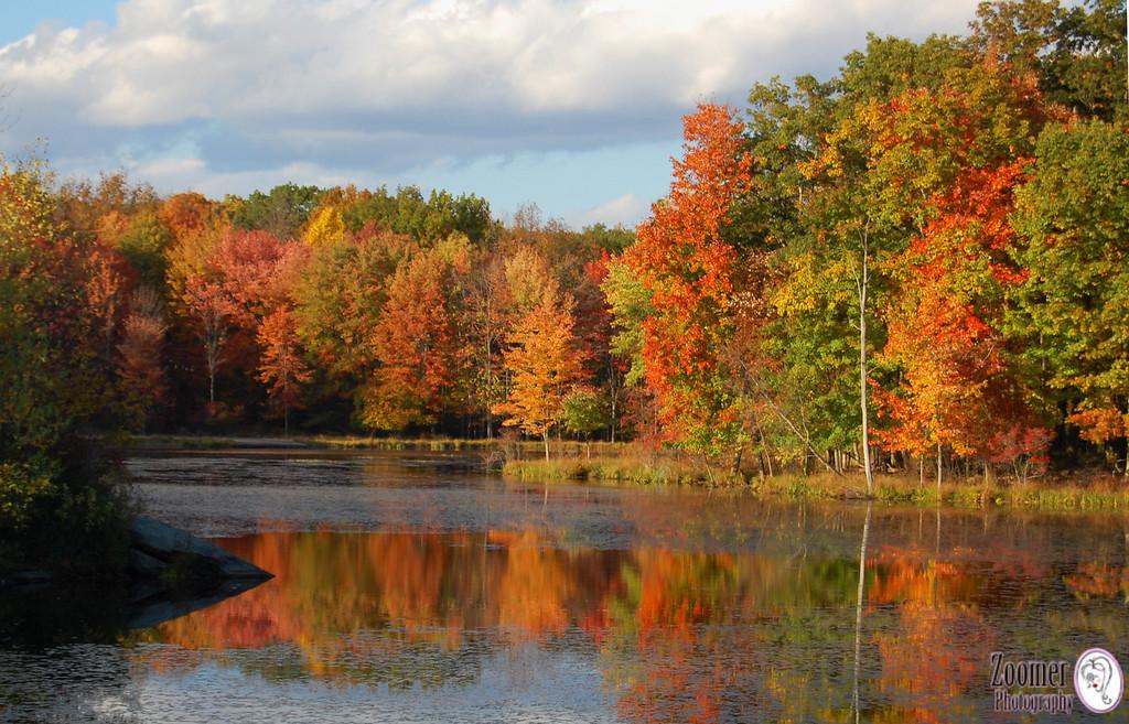 Timothy Lake - PA