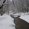 Snowy day in the woods by Drew