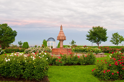 The Duluth Rose Garden