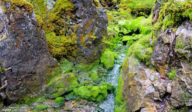 Hidden spring in Schwarzwassertal