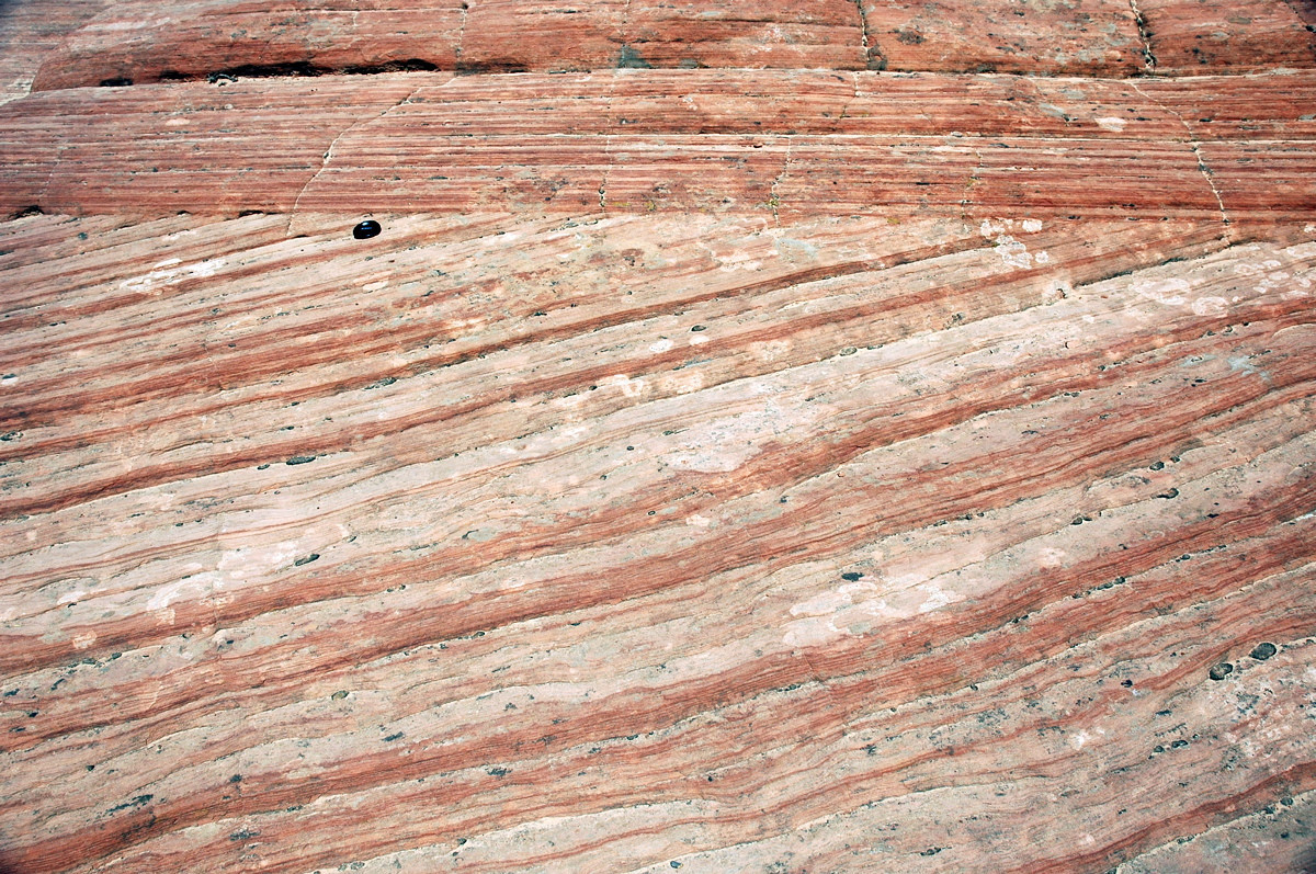 Zion National Park, eolian cross bedding