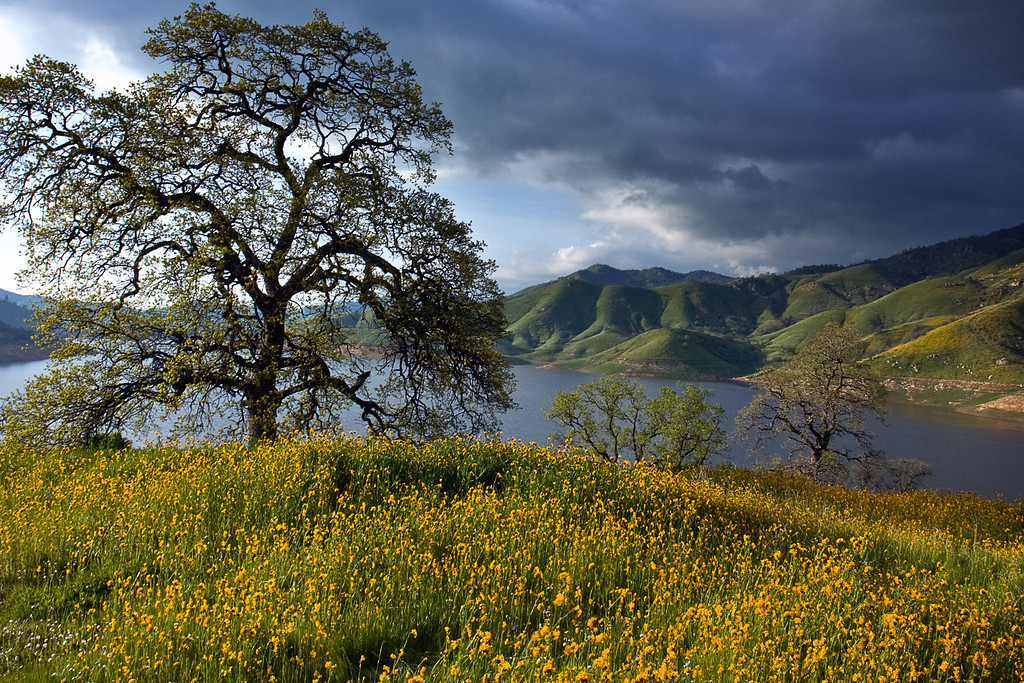 Spring Storm Coming, Lake Kaweah