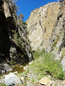 Another view of the Big Narrows.