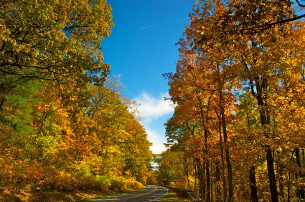Shenandoah Fall 2010